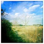 川沿いの小道を歩いてHipstamaticで撮ってみる。