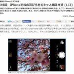 これで桜のアップも撮影OK「iPhoneで桜の花びらをピシッと撮る方法」