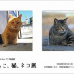 第1回 Atelier85 写真展「ねこ、猫、ネコ展」 一ヵ月後に開催します。