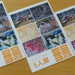 「クリエーターによる6人展」を開催します。稲城市中央図書館で2017年10月27日(金)~11月5日(日)ねこの写真を展示します。