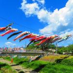 快晴の空に泳ぐ鯉のぼりをCanon PowerShot SX720 HSの「極彩色」で撮ったらめちゃくちゃ鮮やかな写真になった。