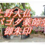 上野大仏とパゴダ薬師堂(東京・上野)に参拝し御朱印をいただく。お顔だけになってしまった大仏様は受験合格のご利益ありで大人気!