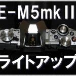 OLYMPUS OM-D E-M5mkⅡ で高幡不動の五重塔のライトアップを撮ってみた。その結果、ライトアップ撮影の自分なりの設定が見えてきた。